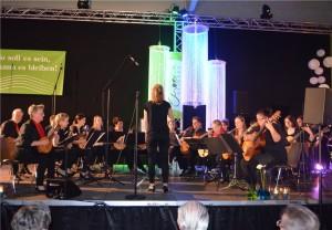 Das-Zupforchester-Oetzingen-beeindruckte-mit-den-Klaengen-185789